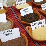 variedades de quinoa