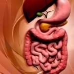 2/12/14 Charla Online: Cirugía de la obesidad