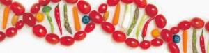 ADN y alimentación