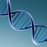 Tests nutrigenéticos: genética aplicada a la nutrición